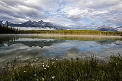 Herbert Lake reflections (Explore 9/9/2015) (Patty Bauchman) Tags: nature landscape earlymorning mountainlake albertacanada banffnationalpark icefieldsparkway canadianrockies herbertlake lakereflection bowmountains