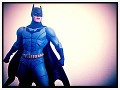 DC Collectibles Designer Series (dcmotumarveldisney) Tags: batman dccomics catwoman jaelee dccollectibles