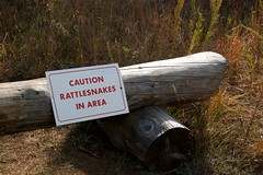 Caution Rattlesnakes (The Good Brat) Tags: autumn sign warning bench us colorado hike trail rattlesnake