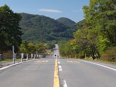 Mt. Haruna (elminium) Tags: road mountain japan gunma dmcg1