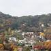 Fall_in_Seoul_20151110_01