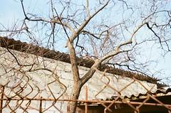 29090025 (alfonso_gm) Tags: camera project kodak homeless disposable chisinau moldova