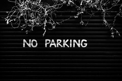 No Parking (Mabry Campbell) Tags: street uk england blackandwhite black london monochrome sign june metal wall dark photography photo vines europe pattern photographer image fav50 unitedkingdom garage noparking parking fav20 capitol photograph fav30 fineartphotography capitolcity fav10 2013 fav40 fav60 fav80 fav70 fineartphotographer houstonphotographer eos5dmarkiii mabrycampbell