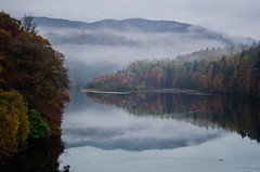 Foggy Hills again (daedmike) Tags: autumn trees leaves misty reflections duck foggy lochfaskally pitlochy