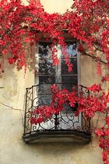 Aorta (finestra29) Tags: italien rot lago herbst treppe aorta daorta