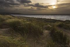 West Wales Weather Warning (shawn~white) Tags: sea plant green beach nature grass weather wales landscape gold coast sand colours place wind unitedkingdom dunes ceredigion lightsource ynyslas shawnwhite canon6d shawnraisindp