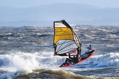 PC311262-Edit (Brian Wadie Photographer) Tags: gulls oystercatcher windsurfing kiting em1 goodlight 14xtc avonbeach canon70300lis hemgistburyhead