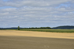 Partie de foin dans l'ombre (Flikkersteph -4,000,000 views ,thank you!) Tags: countryside rural landscape nature summer beautiful fields clearsky champagneetfontaine prigord france