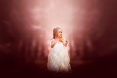 Chloe... (Jennifer Blakeley) Tags: fall leaves childhood child dress leaf red magical dreamy moody