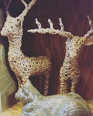 Comet and Cupid are patiently waiting for the first snowfall... #reindeer #61daysuntilchristmas suntilchristmas #catonashelf #hotels #trinkets #lodging #bedandbreakfastlife #westviewbb #LNK (Westviewbedandbreakfast) Tags: instagram westview bed breakfast