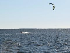 Kite surfing near Skyway Bridge in St. Petersburg (28) (Carlosbrknews) Tags: kitesurfing stpetersburg skywaybridge tampa bay florida