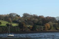 Penryn Quay, Cornwall, (cazzycoffeegirl) Tags: penryn boats