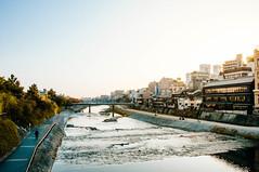 Kamogawa River along Gion () Tags: japan gion kyoto vsco sunset nikond300s ancient pristine matcha tea