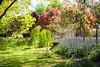 _MG_3498 (TobiasW.) Tags: spring frühling fruehling garden gardenflowers gartenblumen gärten garten blue mountains nsw australien australia backyard public