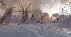 frozen water (Elyjia) Tags: winter snowyislands destination secondlife christmas exploration landscaping photograph