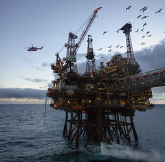 Nature & Technology ([ Jaso ]) Tags: helicopter nature oilandgas ocean sea rx100 crane seagull flock flying energy seascape