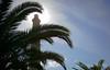 Lighthouse in Maspalomas, Spain (KronaPhoto) Tags: 2016 samsung canarias spain maspalomas travel tourism lighthouse fyr fyrlykt sun sunlight palm palme tre tree sky himmel sol