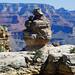 Duck on a Rock, Grand Canyon, AZ 2015