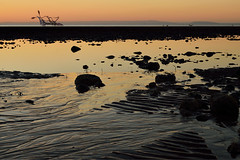 Low tide at Aberconwy (Apionid) Tags: conwy beach sunset lowtide rocks puffinisland giantsquid attack nikond7000 366the2016edition 3662016 day332366 27nov16 northwales coast conwybay