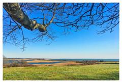Allens Pond (Timothy Valentine) Tags: clichesaturday massaudubon large 2016 1116 westport massachusetts unitedstates us ocean