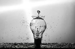 Splash (salas-3) Tags: bulb water splash watersplash light beautiful wallart art fineart creative photography