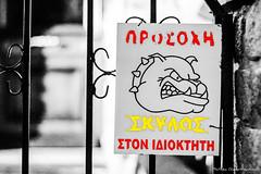 (Nafsika Chatzitheodorou) Tags: street red dog yellow canon lens photography 50mm caution poli polis 2015 palias xanthi 650d ksanthi palia ξανθη πολη γιορτεσ σκυλοσ yongnuo παλια giortes παλιασ