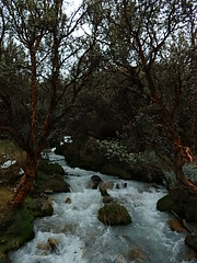 cascadas laguna 69 (taylormcjoel) Tags: y blanca laguna 69 cordillera huaraz sesenta nueve