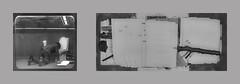 Installation in a showcase at the metro station next to my workplace / More swapped pages from my prompter book Schau-Fenster Passage U-Bahn-Haltestelle Volkstheater / neuerlich ausgetauschte Seiten Soufflierbuch Rose welk Totholz Spiegel Grund Physalis (hedbavny) Tags: vienna wien wood loo man tree male window berg station rose trash work austria mirror sterreich ast theater branch view fenster spiegel text plan haus bahnhof toilette sketchbook unterwegs wc klo cycle page present change mann birch blatt holz papier arbeit geschenk weaving garten exchange mll modell bauen baum blick konzept neu idee tapestry vitrine birke handwerk physalis abfall anzug laurin tausch analogie tapisserie entwurf beruf steinhof haufen swapped weben totholz zyklus workingchamber hedbavny ingridhedbavny