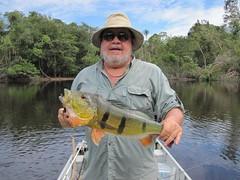 Amazonia 2012 (24)