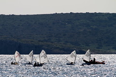 IMG_8830 (stig munchaus) Tags: sailing optimist vouliagmeni