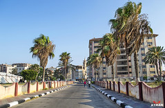 .. (Ayman Abu Elhussin) Tags: africa road street city trees sunset building art history tourism public beautiful skyline architecture night photography town photo cityscape colours view shot outdoor album egypt calm palm arabic east clean midtown palmtrees portsaid arab complex   ayman  2015       nikon3200                23julyst aymanabuelhussin 4 tarhelbahr4