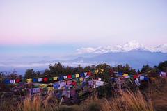 Prayer Flags (elenaleong) Tags: nature sunrise landscape prayerflags acap poonhill ghorepani snowmountains dhaulagiri1 8167m 3210m annapurnaconservationareaproject dhaulagirimassif nepaljomsomtrekking 7thhighestmountain hilmalays