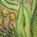 Vincent Van Gough - Iris - national gallery of canada 082
