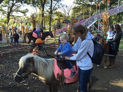 """Paul Rides a Pony • <a style=""""font-size:0.8em;"""" href=""""http://www.flickr.com/photos/109120354@N07/22856519269/"""" target=""""_blank"""">View on Flickr</a>"""