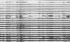 AHM_3813.jpg (ahmonge2) Tags: laalbufera accinformativa objetivovalencia