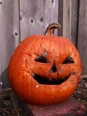 (theleakybrain) Tags: pumpkin jackolantern img20151122115826420