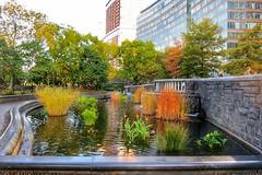 Battery Park, NYC (LuciaB) Tags: newyorkcity usa manhattan batterypark hudsonriver newyorkstate