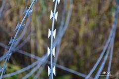 Stop bodei ici-7 (Miha Crnic Photography) Tags: wire stop slovenija barbed istra policija dragonja hrvaka mejniprehoddragonja bodeaica ici bodei