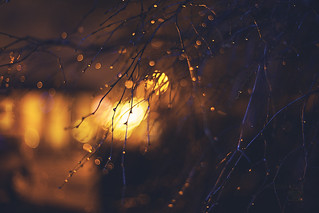 set fire to the rain...
