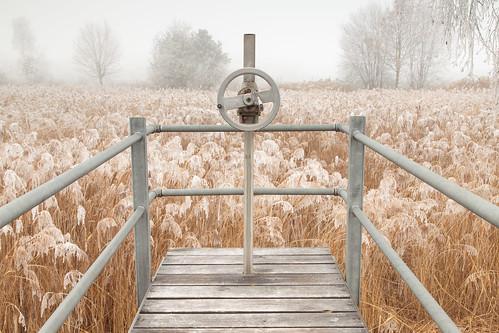 Frosty winter break