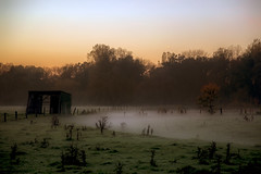 Fog And Light (Klaus Ficker) Tags: light sunset fog canon germany evening country late groundfog eos5dmarkii kentuckyphotography klausficker