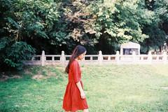 000011 (Leung) Tags: leica portrait color film photography photo m6 voigtlnder fujicolor filmphotography nokton35mmf14 premium400