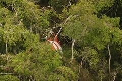 Resgate voo 1907 (Fora Area Brasileira - Pgina Oficial) Tags: clareiraquedadovo1907 fotgrafosgtjohnsoncecomsaer acidente desastre areo 1907 sar militares parasar