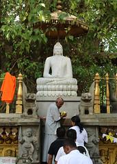 Kelaniya Temple (IMG_2247b) (Dennis Candy) Tags: srilanka ceylon serendip serendib kelaniya temple solosmasthana buddhism religion culture tradition heritage holy sacred people worshipper offering buddha statue