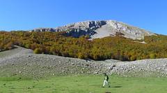 Monte Pollino dai Piani di Pollino