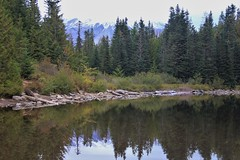 IMG_6497 (Brandi Bonde) Tags: mthoodnationalforest mthood trail hike lake mirrorlake oregon