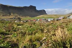 Iceland - Vik (melqart80) Tags: vulcanic paesaggispettacolari europe paesaggiislandesi iceland islanda vik