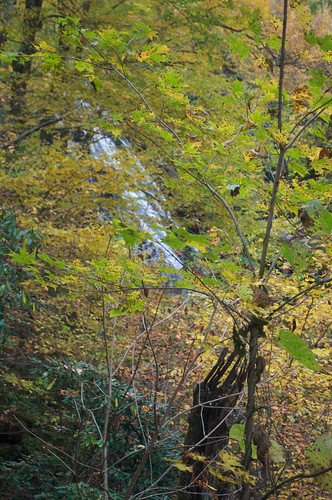 Blue Ridge Parkway 177 - Crabtree Falls