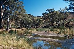 Somewhere in the Flinder Ranges (Stefan Fisher) Tags: 35mm kodakektachrome downunder outback minoltaxd7 flindersranges oz outdoor abandoned travel landscape