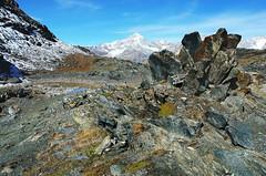 Stein-Blume (welenna) Tags: alpen autumn alps switzerland snow schwitzerland schnee sky swiss stone steine gornergrat berge blue mountains mountain wallis